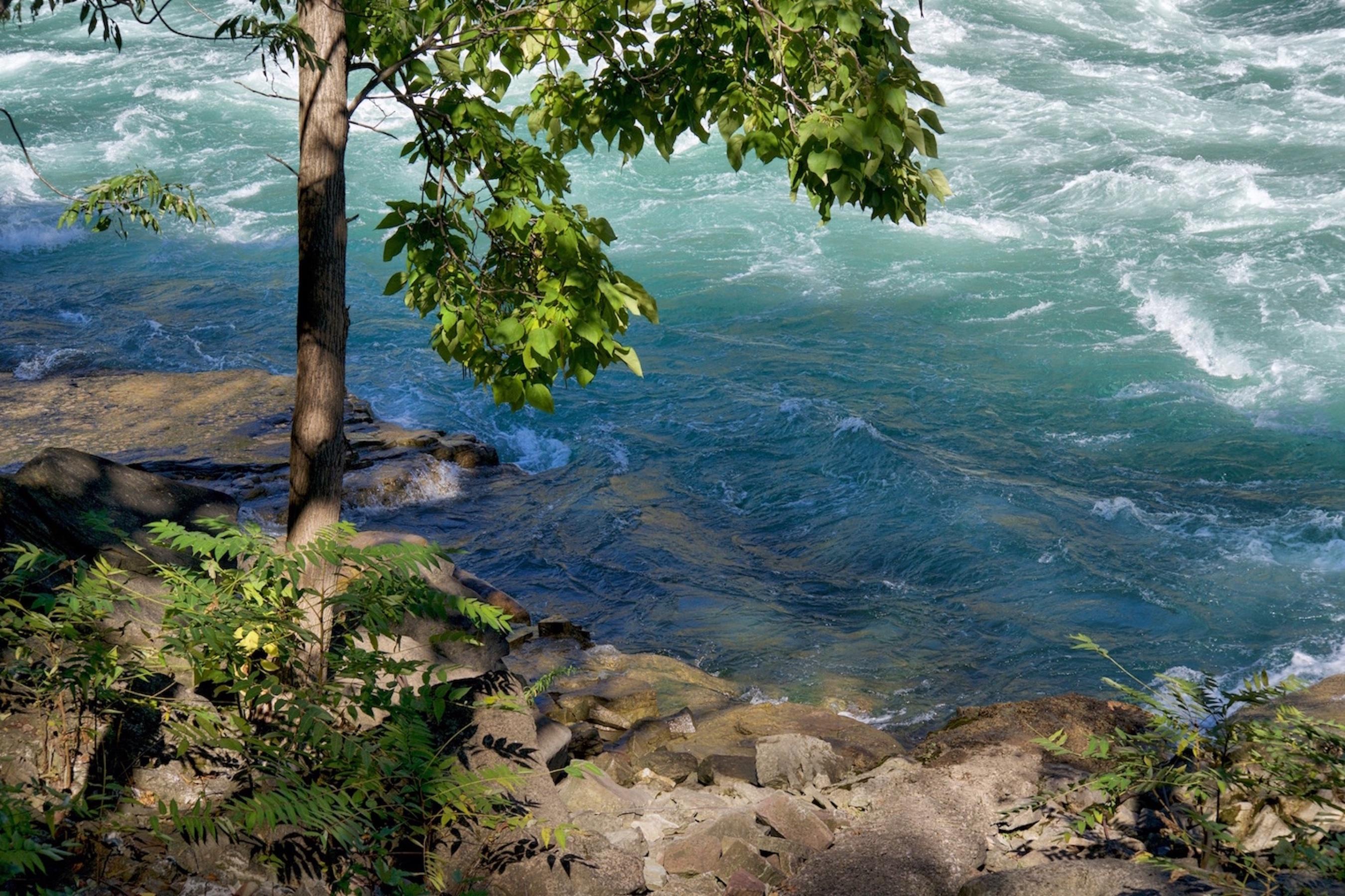 Niagara-16 IMG_0404